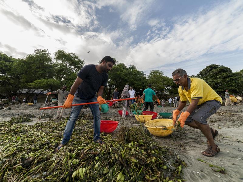 Photographer:Kochi Muziris Biennale Foundation | Beach Cleaning by the Kochi Biennale Foundation