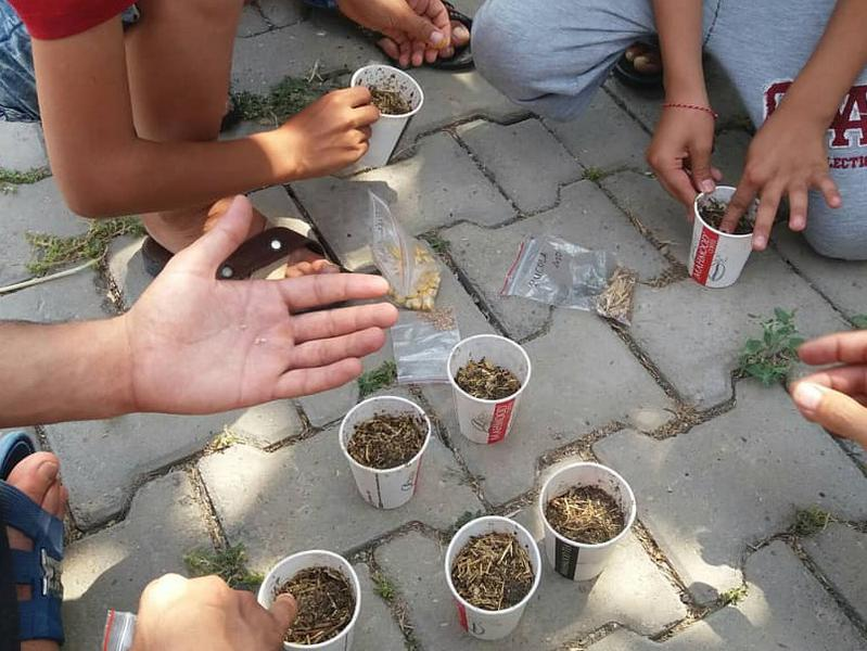 Photographer:Gijs | Turkisch school garden