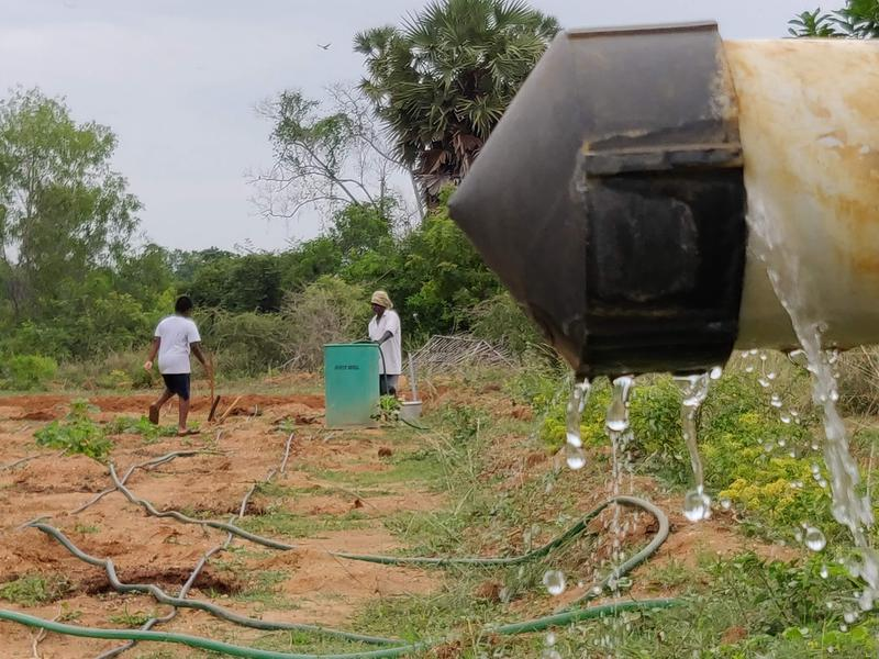 Photographer:Akshay | Mohanam Cultural Centre began in 2001 under the Auroville Village Action Trust in Auroville