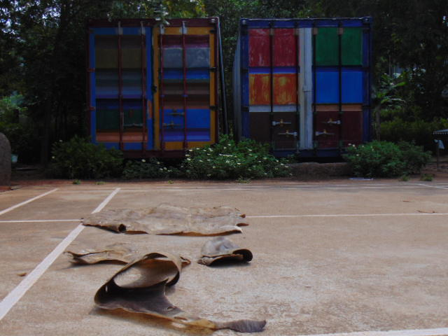 Photographer:Gabriel | Drum skins - animal hides - drying in the morning sun