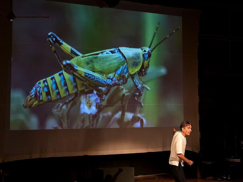Photographer:Piero Cefaloni | Hamish and the grasshopper