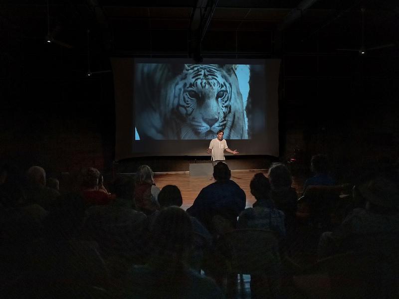 Photographer:Piero Cefaloni | The powerful tiger story with Hamish