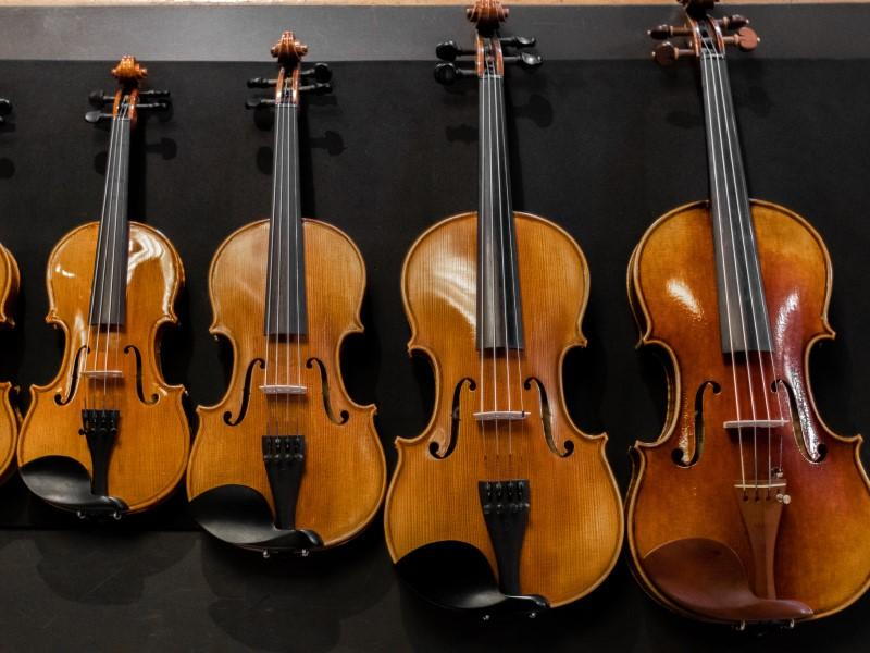 Photographer:Nd | Violins